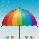 Raining sky background. Rainbow color umbrella and birds in raining sky background Royalty Free Stock Images