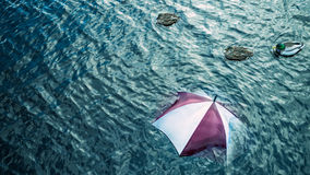 Raining too much? Escape the bad weather, vacation concept. Royalty Free Stock Images