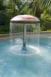 Raining Umbrella in Pond Stock Image