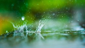 Raining Water Drop Ripple On Floor. With Natural Fresh Environment Bokeh Blurred Background royalty free stock photos