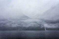 Rainny en mistige dag in Milfordsound Royalty-vrije Stock Foto