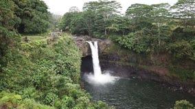 Rainow faller Hawaii arkivfilmer