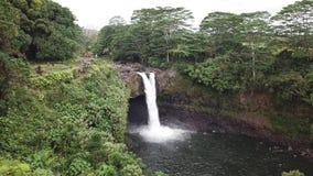 Rainow faller Hawaii stock video