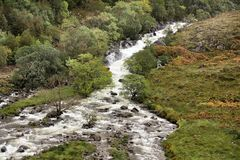 Rain fed river in the Scottish Highlands. It rains a lot in the Scottish Highlands, turning streams into raging torrents Royalty Free Stock Image