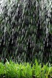 Rainstorm Stock Image
