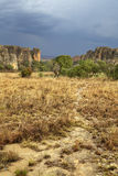 Rainstorm is coming on a yellow rocky desert in Madagascar Stock Image