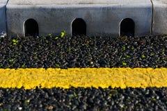 Rainwater drainage system Royalty Free Stock Photos