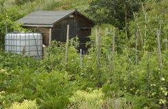 Rainwater tank. In a garden Royalty Free Stock Photo