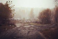 Rainy autumn landscape royalty free stock images