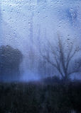 Rainy autumn landscape through a window with raindrops. Royalty Free Stock Photography