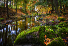Rainy autumn in a park. By the river with mossy stones Stock Photo