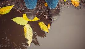 Rainy autumn weather Stock Photo