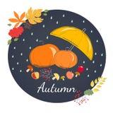 Rainy autumn with yellow umbrella Stock Image