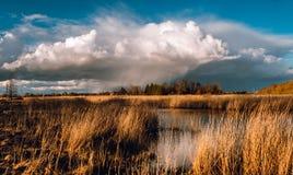 Rainy dark clouds panorama near small pond.  royalty free stock images