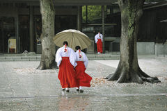 Rainy day Royalty Free Stock Photos