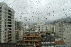 Rainy day. Morning, Spring Rainy day royalty free stock photo