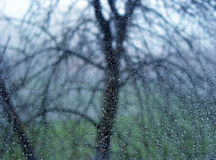Rainy day. A window covered in rain drops with a siluette of a tree behind it Stock Photo