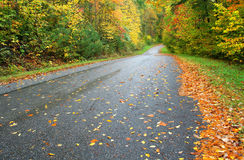 Rainy Day in Autumn Stock Photo