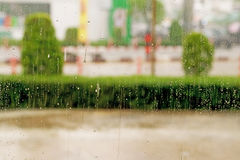 Rainy day for background Royalty Free Stock Images