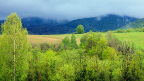 Rainy day in Bieszczady Mountains, Poland Stock Image