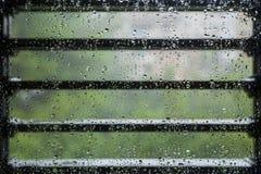 Rainy day. Stock Photos