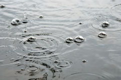 Rainy day. bubbles on the water Royalty Free Stock Photos
