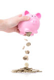 Rainy day funds. Raiding the piggy bank for a rainy day isolated on white Royalty Free Stock Photo