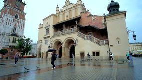 Rainy day in Krakow, Poland. KRAKOW, POLAND - JUNE 13, 2018: The rainy city center with flock of pigeons on wet floor in front of the Cloth Hall, on June 13 in stock video