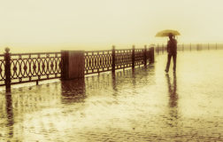Rainy day. Royalty Free Stock Photo
