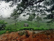 Rainy Day. Munnar Tea farm on rainy day! Water drops in the side glass of a vehicle Stock Photography