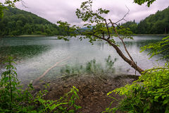 Rainy Day on Plitvice Lakes National Park Royalty Free Stock Images