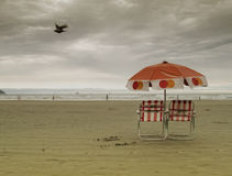 Red umrella and beach chairs Stock Image