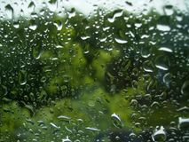 Raindrops at the window on the green background of trees royalty free stock image