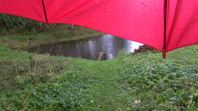 Rainy day - summer pond and red umbrella with water drops stock footage