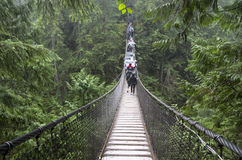 Rainy day suspension bridge walk Stock Image