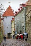 Rainy day in Tallinn, Estonia Stock Image