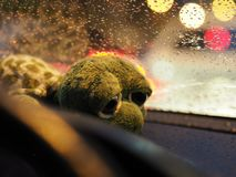On rainy day royalty free stock photography