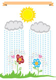 Rainy day. Vector illustration of rain dropping on flowers and stimulating them to grow. Even rainy days have their upside Stock Photo