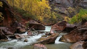 Rainy Day on the Virgin River in Zion Canyon stock video