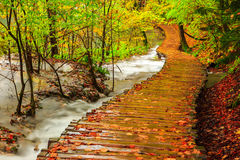 Rainy day and wooden tourist path in Plitvice Royalty Free Stock Photos