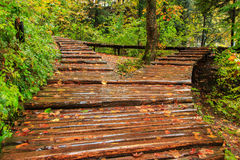 Rainy day and wooden tourist path in Plitvice Stock Photo