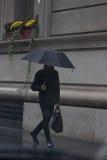 Rainy Days Stock Photo