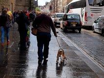 Rainy Edinburgh. Stock Images