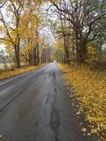 Rainy fall day. On Country Road in Northwest Indiana royalty free stock image