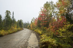 Rainy fall day on muddy dirt road in northern Maine. Royalty Free Stock Photography