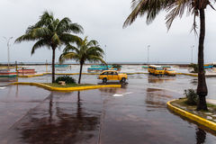 Rainy Havana Royalty Free Stock Photography