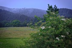 Rainy landscape in the swabian alb royalty free stock image