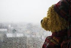 Rainy Mood. Teddybear is looking through the rainy window stock images