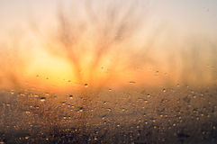 Rainy morning on the road. Rainy morning in early spring . Morning traveler. Rain drops on a car window Stock Images