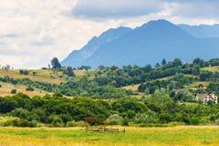 Rainy mountain landscape, Romania Royalty Free Stock Photo